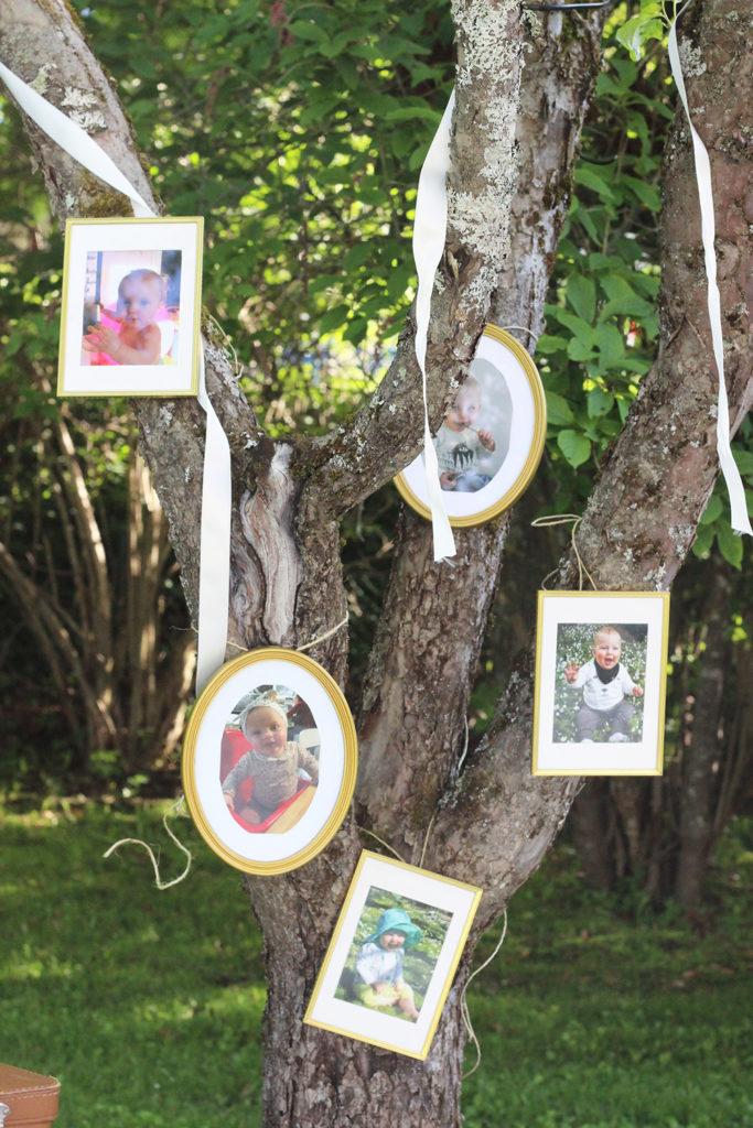 fototräd
