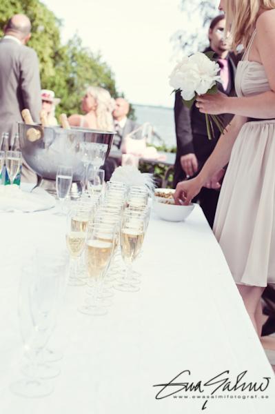 Madeleine & Eriks Bröllop 2011 (Lågupplösta) (452)